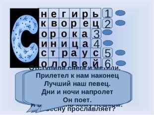 н е г и р ь к в о р е ц и о р о р о к а ц н с с т о л е в у а а и й 1 Чернокр