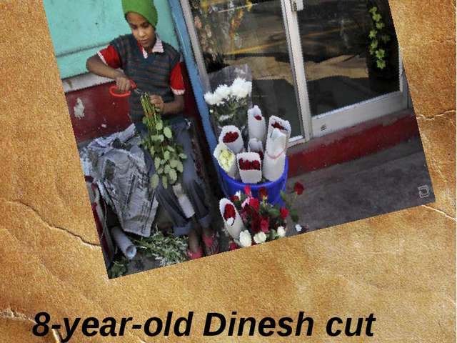 8-year-old Dinesh cut roses at a flower shop. 11