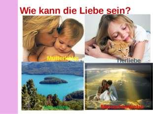 Wie kann die Liebe sein? Tierliebe Mutterliebe Naturliebe Menschenliebe Mutte