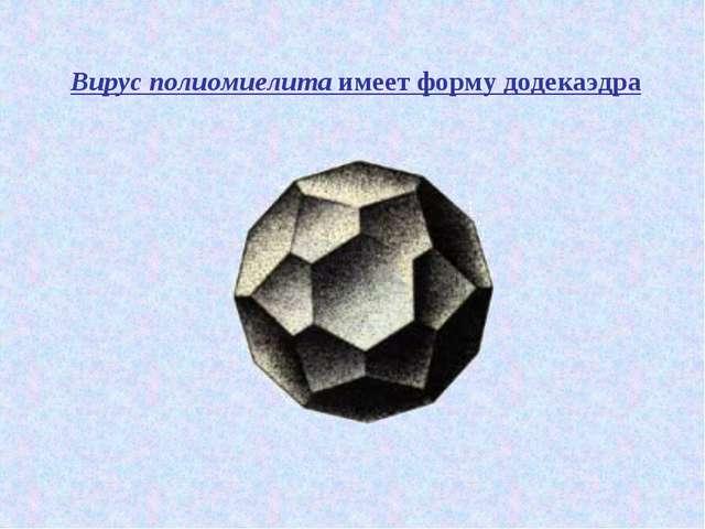 Вирус полиомиелита имеет форму додекаэдра