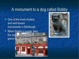 A monument to a dog called Bobby One of the most modest and well-known monume