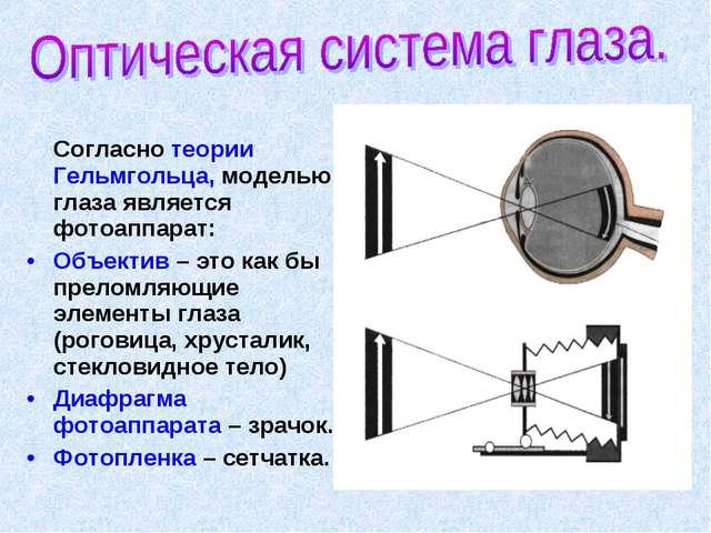 Согласно теории Гельмгольца, моделью глаза является фотоаппарат: Объектив –...