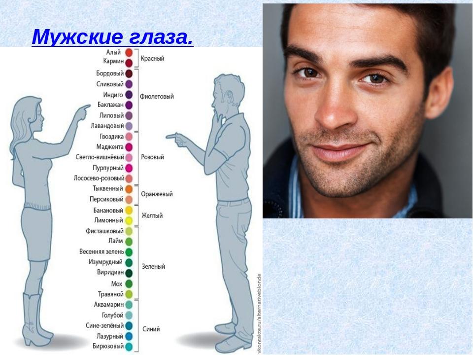 1.Лучше развито центральное зрение. Мужские глаза. 2.В глазах мужчин содержи...