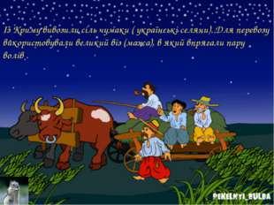 Із Криму вивозили сіль чумаки ( українські селяни). Для перевозу використовув