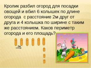 Кролик разбил огород для посадки овощей и вбил 6 колышек по длине огорода с р