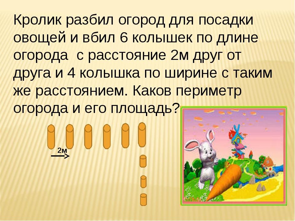 Кролик разбил огород для посадки овощей и вбил 6 колышек по длине огорода с р...