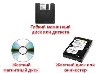 Жесткий диск или винчестер Гибкий магнитный диск или дискета Жесткий магнитны