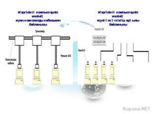 Жергілікті компьютерлік желінің жуан коаксиалды кабельмен байланысы Жергілікт