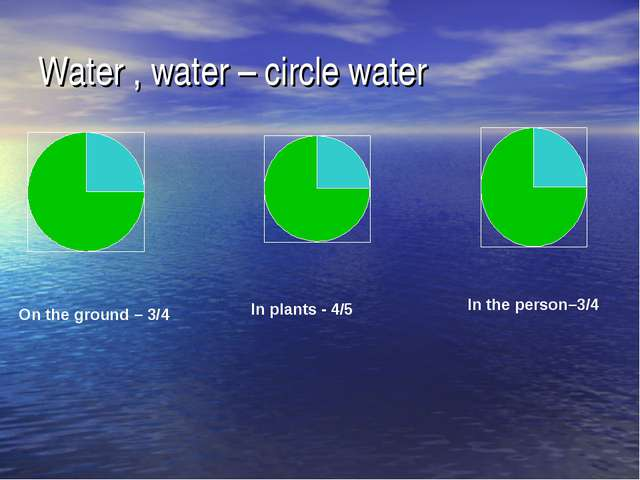 Water , water – circle water On the ground – 3/4 In plants - 4/5 In the perso...
