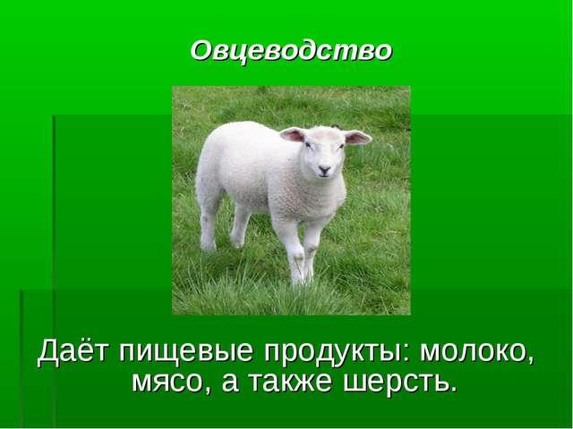 Овцеводство Даёт пищевые продукты: молоко, мясо, а также шерсть.
