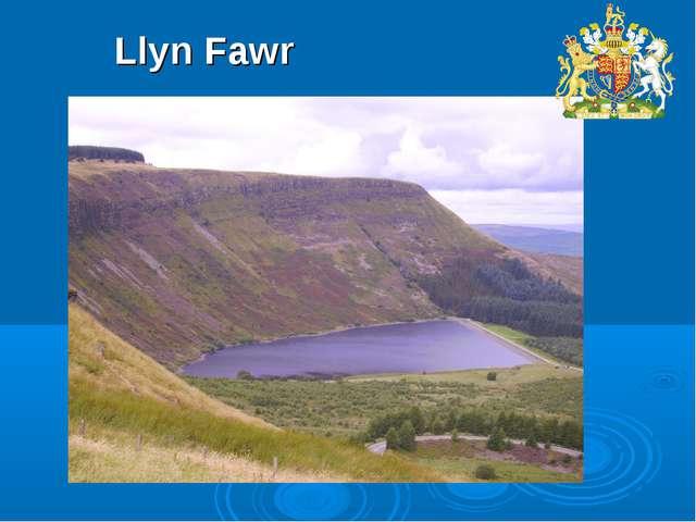 Llyn Fawr