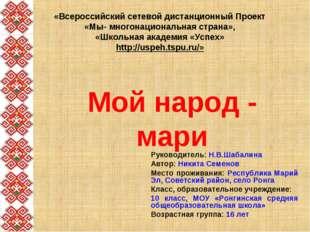 «Всероссийский сетевой дистанционный Проект «Мы- многонациональная страна», «