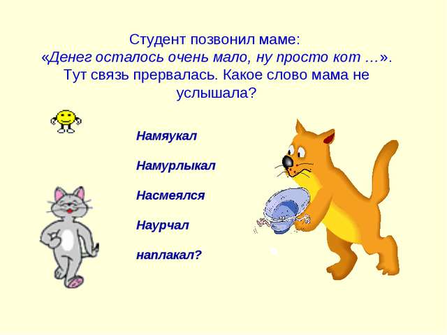 Студент позвонил маме: «Денег осталось очень мало, ну просто кот …». Тут свя...