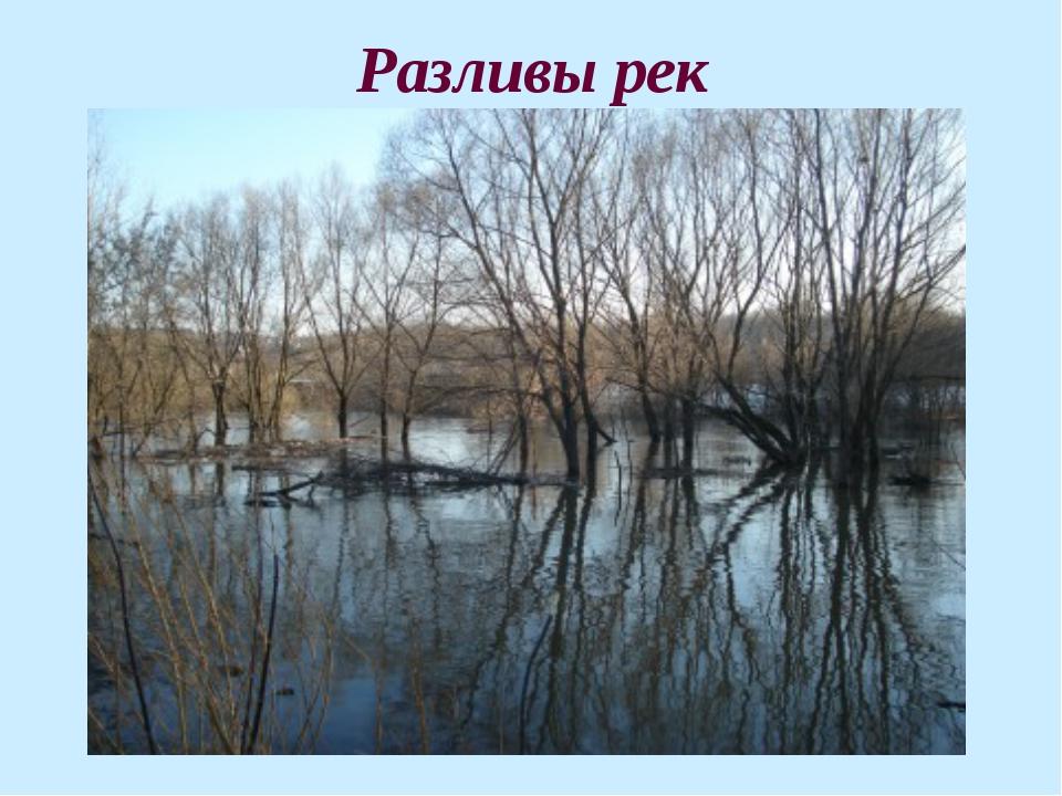 Разливы рек
