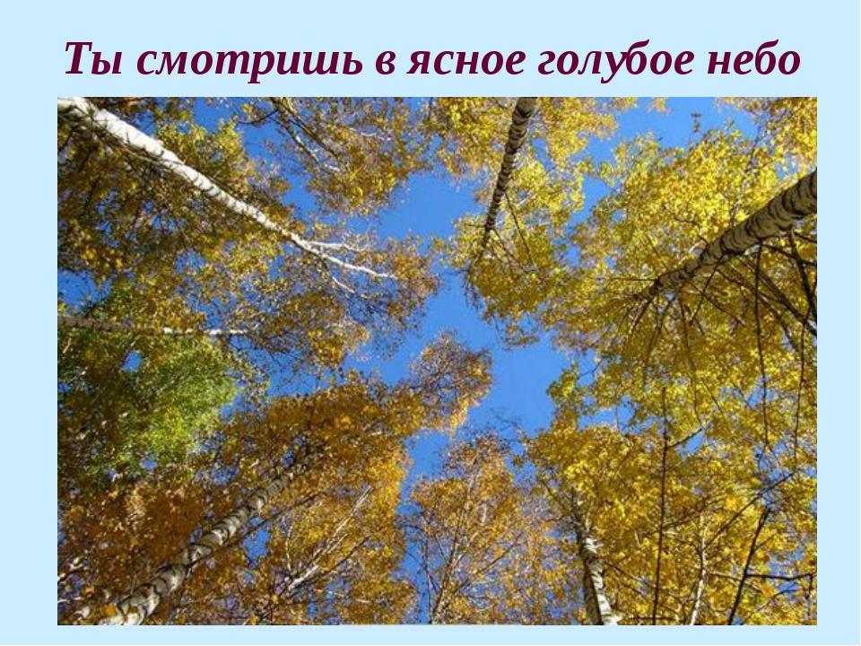 Ты смотришь в ясное голубое небо