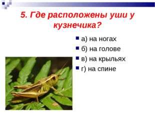 5. Где расположены уши у кузнечика? а) на ногах б) на голове в) на крыльях г)