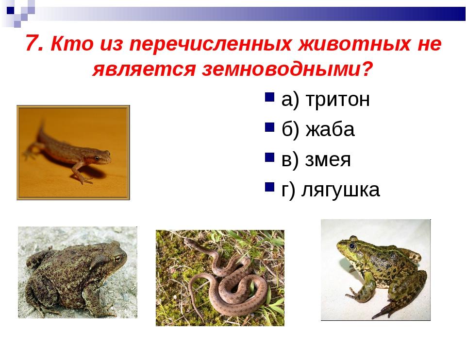 7. Кто из перечисленных животных не является земноводными? а) тритон б) жаба...