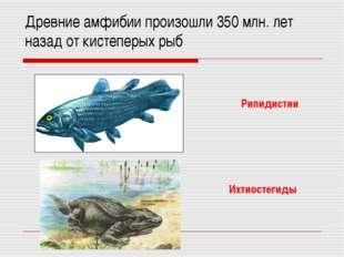 Древние амфибии произошли 350 млн. лет назад от кистеперых рыб Рипидистии Ихт