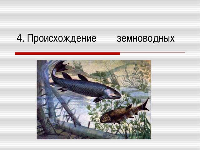 4. Происхождение земноводных