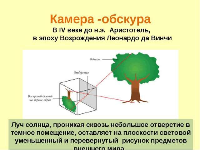 делали давление света фотосинтез фотохимические реакции добавок