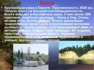 Волга Крупнейшая река в Европе. Протяженность 3530 км. Начало берет на Валдай