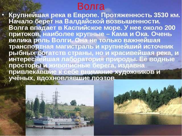 Волга Крупнейшая река в Европе. Протяженность 3530 км. Начало берет на Валдай...