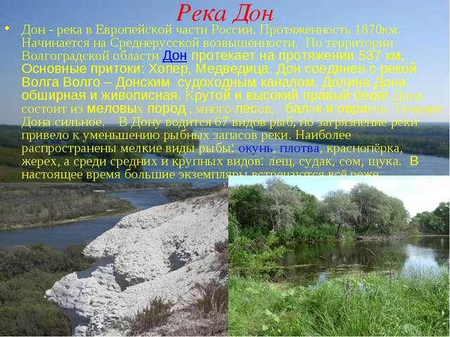 Река Дон Дон - река в Европейской части России. Протяженность 1870км. Начинае...