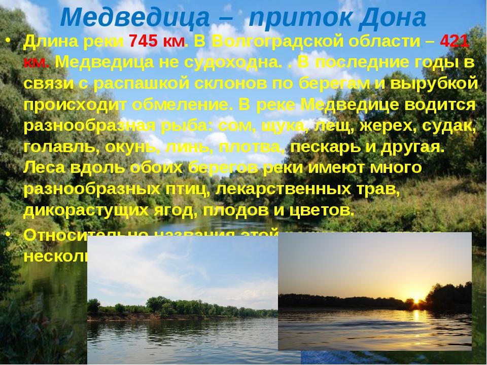 Медведица – приток Дона Длина реки 745 км. В Волгоградской области – 421 км....