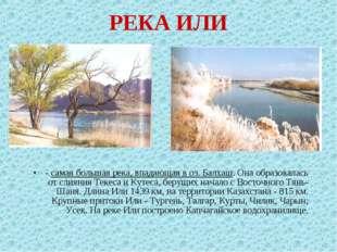 РЕКА ИЛИ - самая большая река, впадающая в оз. Балхаш. Она образовалась от сл