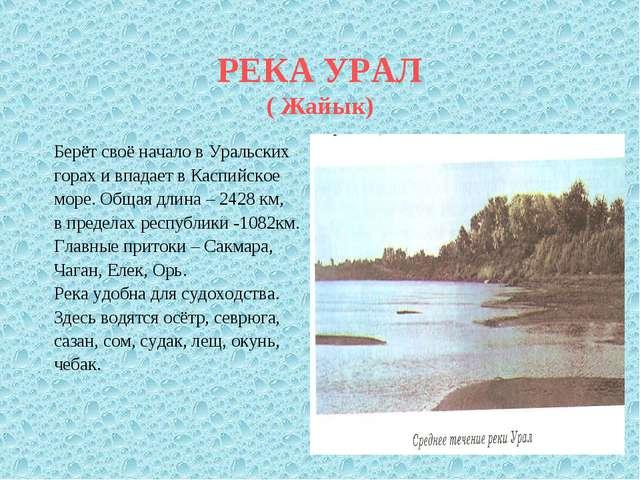 РЕКА УРАЛ ( Жайык) Берёт своё начало в Уральских горах и впадает в Каспийское...