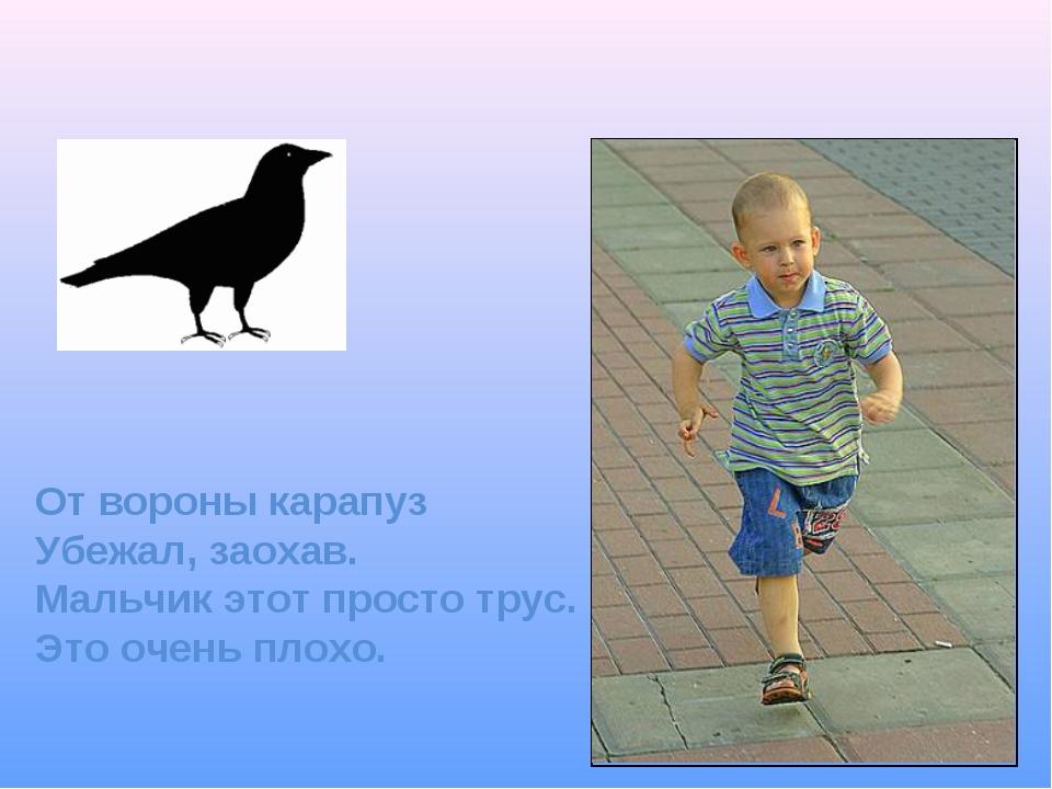 От вороны карапуз Убежал, заохав. Мальчик этот просто трус. Это очень плохо.