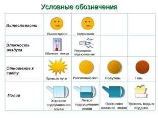 Условные обозначения Влажность воздуха Отношение к свету Выносливость Полив В