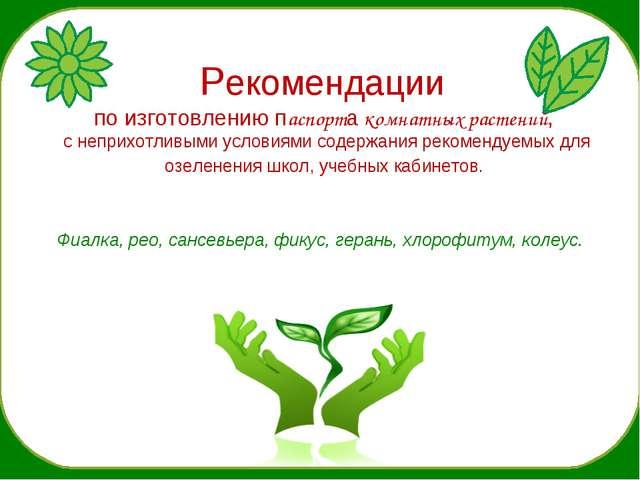 Рекомендации по изготовлению паспорта комнатных растений, с неприхотливыми у...
