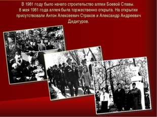 В 1981 году было начато строительство аллеи Боевой Славы. 8 мая 1981 года алл