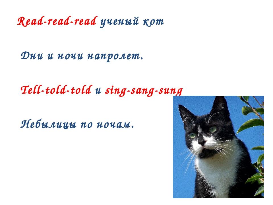 Read-read-read ученый кот Дни и ночи напролет. Tell-told-told и sing-sang-su...
