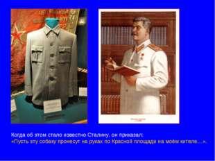 Когда об этом стало известно Сталину, он приказал: «Пусть эту собаку пронесут