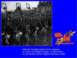 Красная площадь видела много парадов, но только на Параде Победы, 24 июня 194