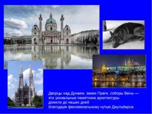 Дворцы над Дунаем, замки Праги, соборы Вены — эти уникальные памятники архите