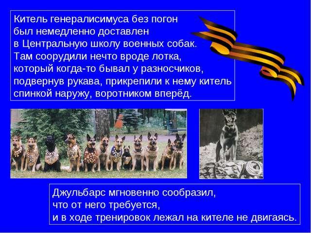 Китель генералисимуса без погон был немедленно доставлен в Центральную школу...