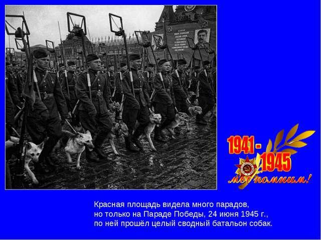 Красная площадь видела много парадов, но только на Параде Победы, 24 июня 194...