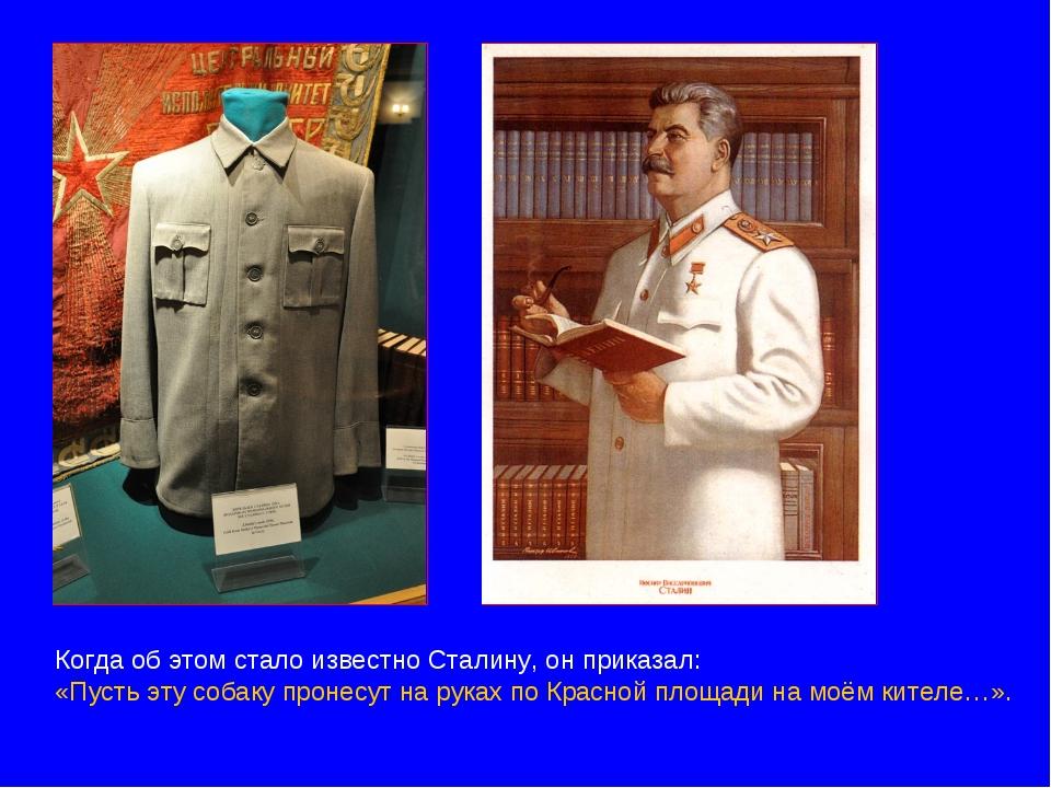 Когда об этом стало известно Сталину, он приказал: «Пусть эту собаку пронесут...