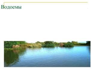 Водоемы Пресных вод приходится очень мало. Поэтому воду нужно беречь. Человек