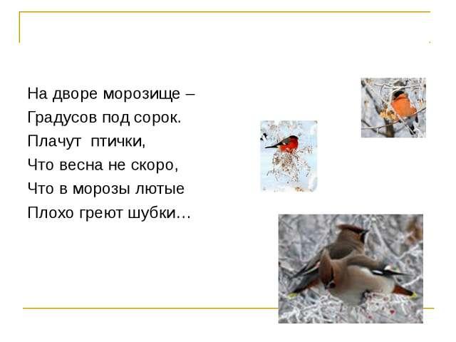 На дворе морозище – Градусов под сорок. Плачут птички, Что весна не скоро, Чт...