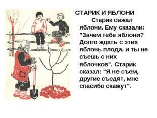 "СТАРИК И ЯБЛОНИ    Старик сажал яблони. Ему сказали: ""Зачем тебе яблони?"