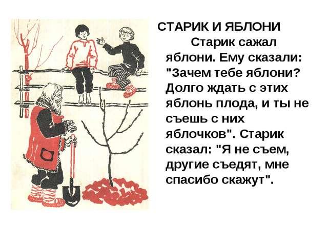 "СТАРИК И ЯБЛОНИ    Старик сажал яблони. Ему сказали: ""Зачем тебе яблони?..."