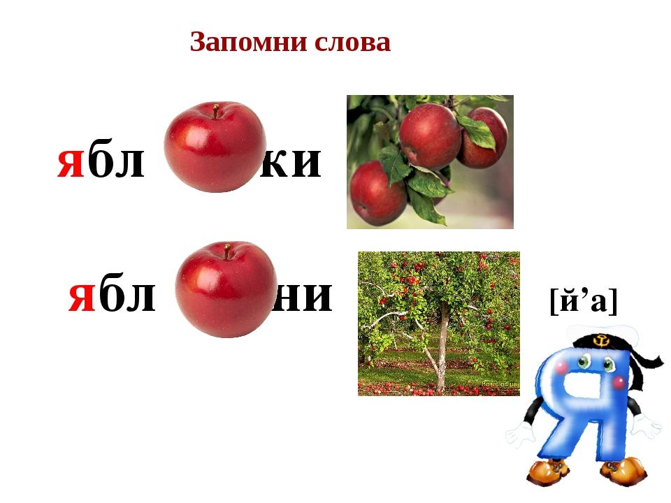 ябл ки ябл ни [й'a] Запомни слова