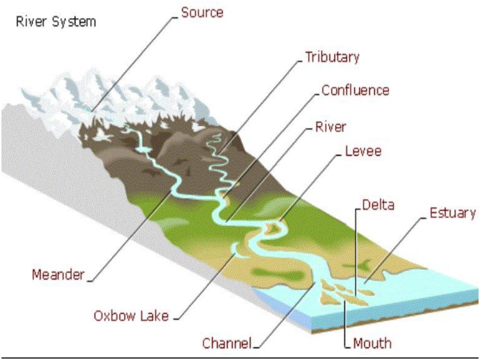 River And Estuary Diagram Golfclub