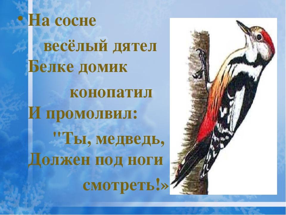 """На сосне весёлый дятел Белке домик конопатил И промолвил: """"Ты, медведь, Долже..."""