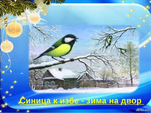 Синица к избе - зима на двор