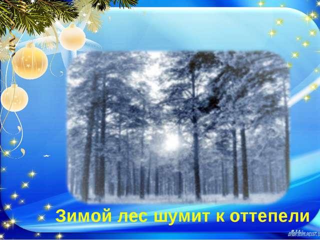 Зимой лес шумит к оттепели